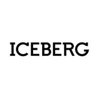 Iceberg internetā