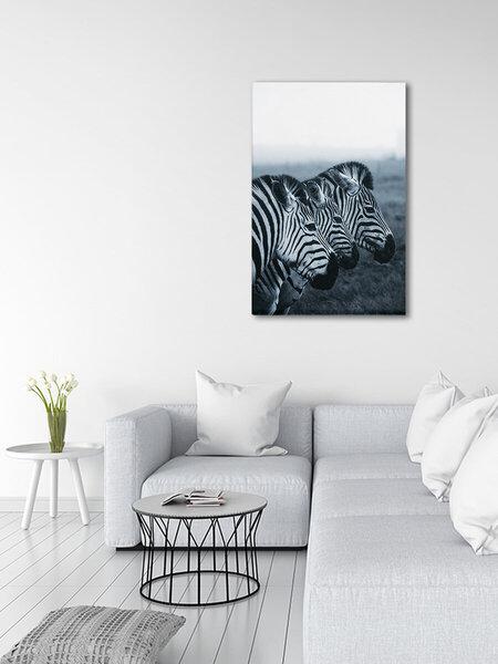 Foto glezna Zebru ģimene, 100x150cm atsauksme
