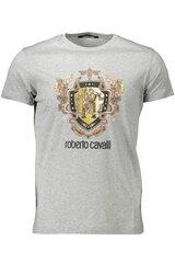 Vīriešu T-krekls Roberto Cavalli, pelēks cena un informācija | Vīriešu T-krekls Roberto Cavalli, pelēks | 220.lv