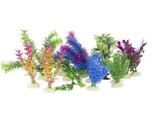 Dekoratīvie augi akvārijam, 2 gab