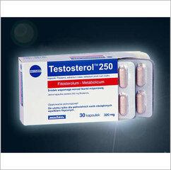 Пищевая добавка  Testosterol 250, 30 капсул. цена и информация | Пищевая добавка  Testosterol 250, 30 капсул. | 220.lv