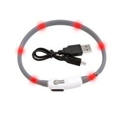 Spīdoša kakla siksna Visio Light LED 20-35 cm, pelēka cena un informācija | Pavadas, apkakles, siksnas suņiem | 220.lv