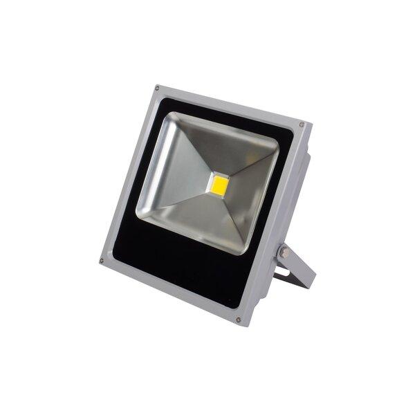 LED Āra lampa 30W (4000K) cena un informācija | Āra apgaismojums | 220.lv