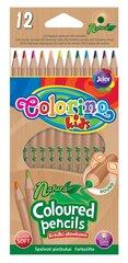 Krāsainie zīmuļi COLORINO KIDS Natura, 12 krāsas 38911PTR cena un informācija | Modelēšanas un zīmēšanas piederumi | 220.lv