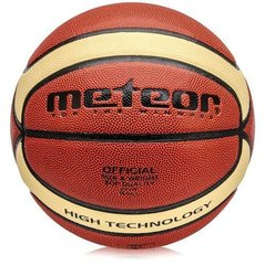 Basketbola bumba Meteor Professional (5 izmērs)
