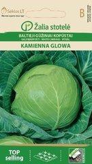 Galviņkāposti Kamienna glowa cena un informācija | Dārzeņu, ogu sēklas | 220.lv
