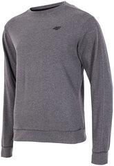 Мужской свитер 4F