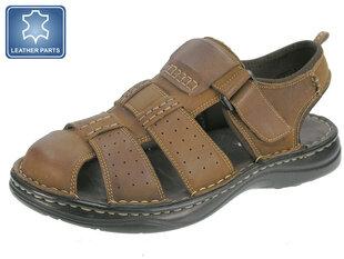 Vīriešu apavi Beppi cena un informācija | Iešļūcenes, čības | 220.lv