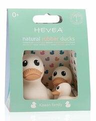 Hevea vannas rotaļlietas Pīlēnu ģimene Kawan