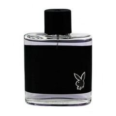 Туалетная вода Playboy Hollywood edt 100 мл цена и информация | Туалетная вода Playboy Hollywood edt 100 мл | 220.lv