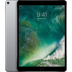 "Apple iPad Pro 10.5"" WiFi (512GB) MPGH2HC/A, Pelēks"