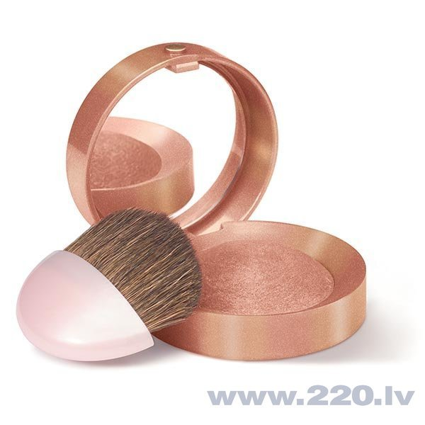 Vaigu sārtumi Bourjois Paris Blush 2.5 g
