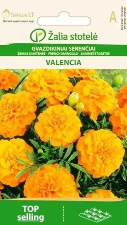 Samtenes zemās Valencia