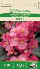 Leduspuķes Oreb H cena un informācija | Puķu sēklas | 220.lv