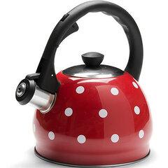 Mayer&Boch чайник, 2 л цена и информация | Термосы, чайники, кофеварки | 220.lv