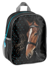 Рюкзак Paso Horse, 17-303KO
