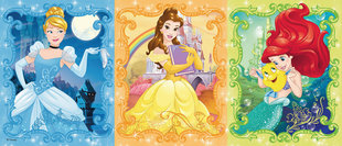 Пазл Disney Princess Ravensburger, 200 ч. цена и информация | Пазлы, 3D пазлы | 220.lv