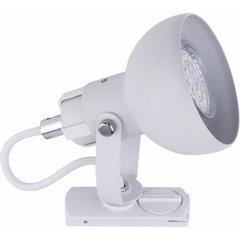 TK Lighting griestu sliedes gaismeklis Tracer
