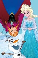 Bērnu dvielis Frozen cena un informācija | Bērnu dvielis Frozen | 220.lv