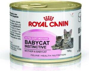 Royal Canin kaķēniem un barojošām kaķenēm Babycat Instinctive, 195 g cena un informācija | Royal Canin kaķēniem un barojošām kaķenēm Babycat Instinctive, 195 g | 220.lv