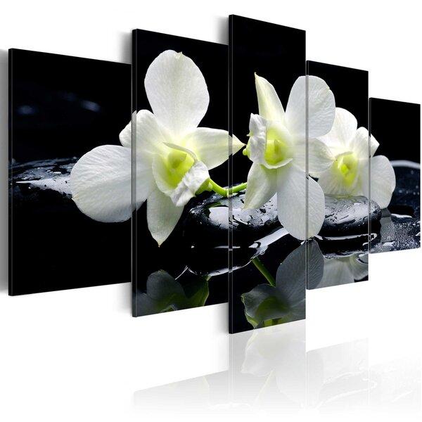 Glezna - Melancholic orchids cena un informācija | Gleznas | 220.lv