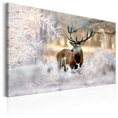 Glezna - Deer in the Cold cena un informācija | Gleznas | 220.lv
