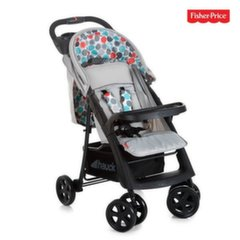 Sporta rati Fisher Price Orlando FP GB, Grey