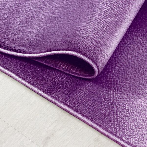 Ayyildiz paklājs Plus Lila 8008, 160x230 cm