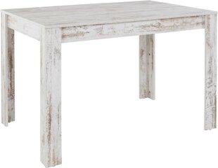 Pusdienu galds Notio Living Lori 120 cm, vecināts balts cena un informācija | Virtuves un pusdienu galdi | 220.lv