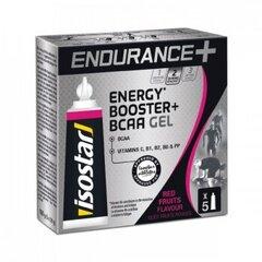 Isostar želeja Endurance Energy BCAA (5x20g) cena un informācija | Uztura bagātinātāji enerģijai | 220.lv