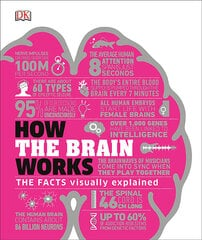 How the Brain Works : The Facts Visually Explained цена и информация | How the Brain Works : The Facts Visually Explained | 220.lv