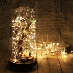 Lokana Ziemassvētku virtene, 50 LED cena un informācija | Lampiņas | 220.lv