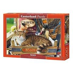 Puzle Castorland Kaķis 500 det. cena un informācija | Puzles, 3D puzles | 220.lv