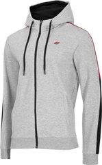 Džemperis vīriešiem 4F H4Z20-BLM018, pelēks cena un informācija | Vīriešu jakas | 220.lv