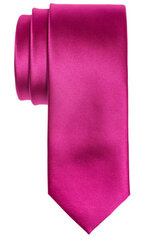 Monton kaklasaite cena un informācija | Kaklasaites, tauriņi | 220.lv