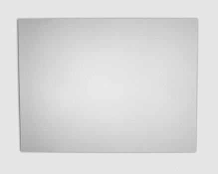 Dabiskas sildīšanas (infrasarkano staru) plāksne SolBee SBP1000 (1000 W, 1 m kabelis) cena un informācija | Sildītāji | 220.lv